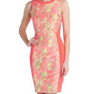TED BAKER  Sleeveless Dress Sz 1
